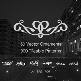 50 vector ornaments & 300 tileable patterns preview